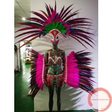 Carnival Parade/ Dance Costume