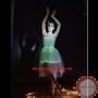 Luminous dress/ Optical fiber
