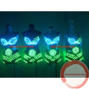 LED dancing costume (Bikini)