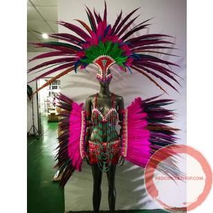Carnival Parade/ Dance Costume