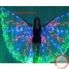 Luminous wings (contact for pricing)