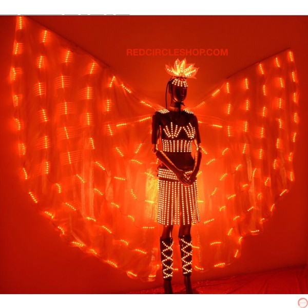 Telecontrolling color-changeable luminous costume with wing - Photo 14