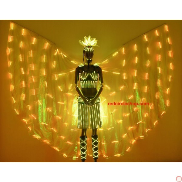 Telecontrolling color-changeable luminous costume with wing - Photo 18