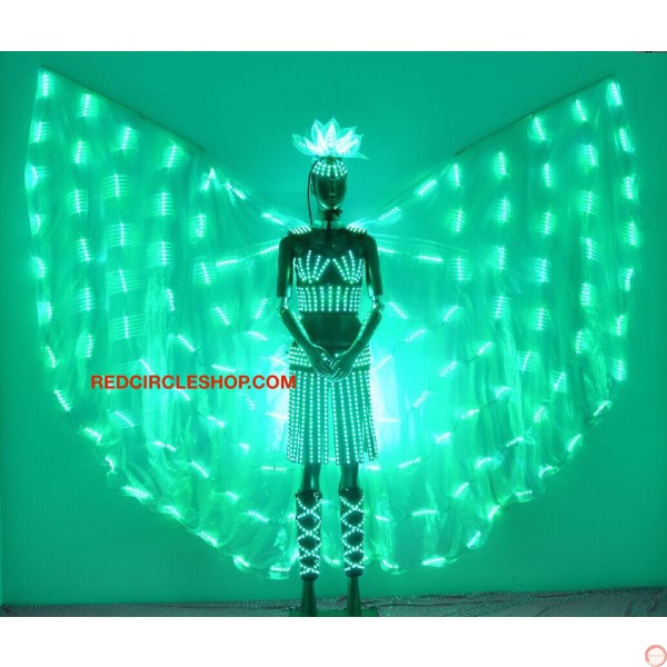 Telecontrolling color-changeable luminous costume with wing - Photo 13