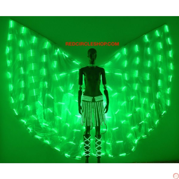 Telecontrolling color-changeable luminous costume with wing - Photo 15