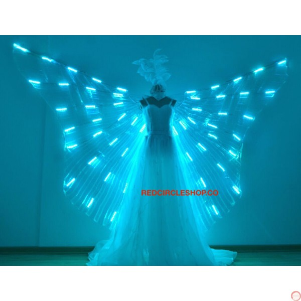 Luminous wings - Photo 8