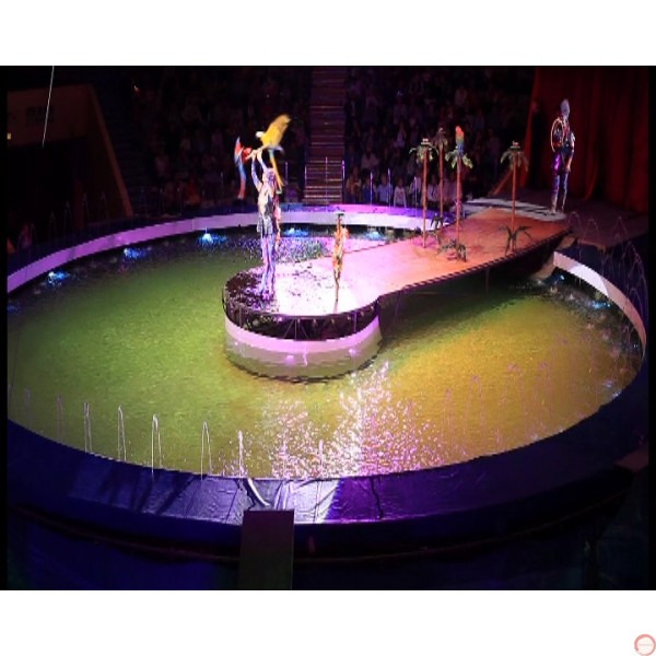 Stage for Water turning into Ice during the show. PRICE ON REQUEST - Photo 10