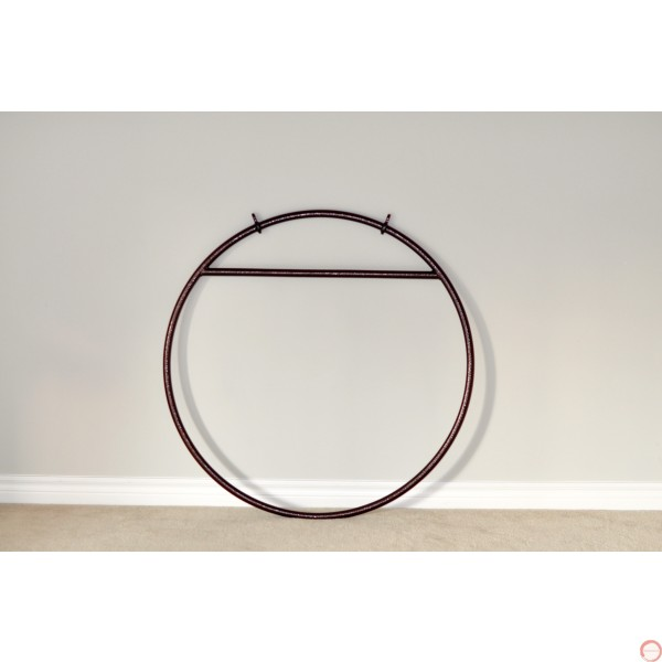 Aerial Lyra Hoop with 2 points  - Photo 6