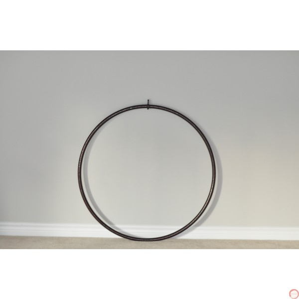 Aerial Lyra hoop with 1 point - Photo 3