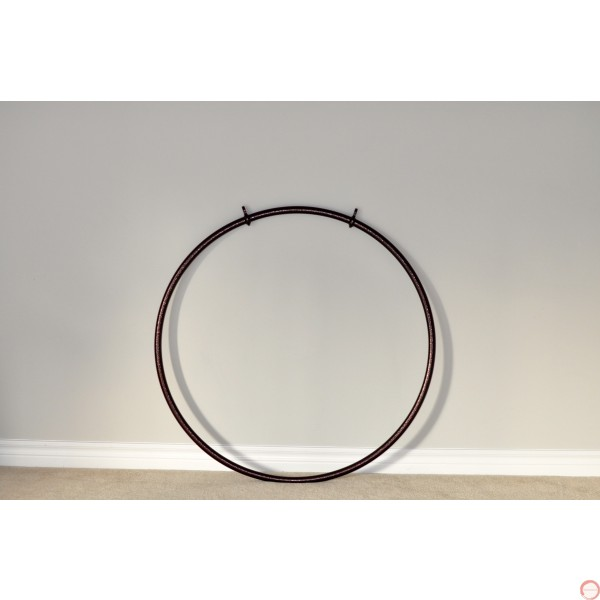 Aerial Lyra Hoop with 2 points (without beam)  - Photo 6