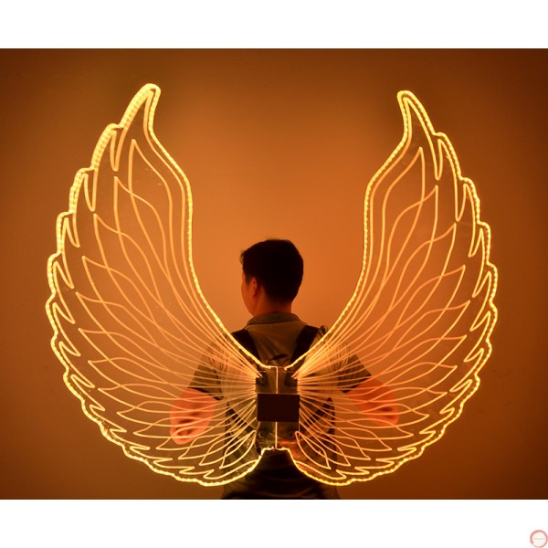 Luminous wings - Photo 6
