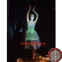 Luminous dress/ Optical fiber
