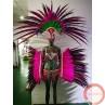 Carnival Parade/ Dance Costume - Photo 4