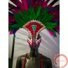 Carnival Parade/ Dance Costume - Photo 1